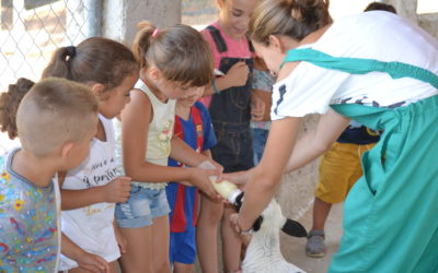 Els projectes d'estiu d'infància de Creu Roja Sabadell visiten la Granja escola Can Pidelaserra de Castellbisbal